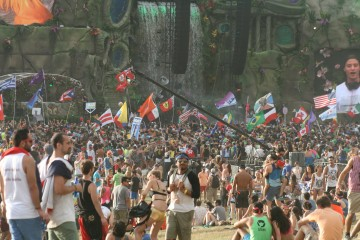 Crowd at a large electronic dance music festival, 2014